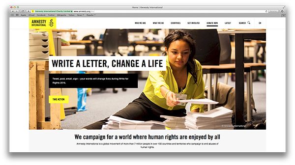 Amnesty International Nonprofit